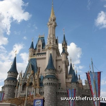 Disney World Tips, Tricks and Ideas!