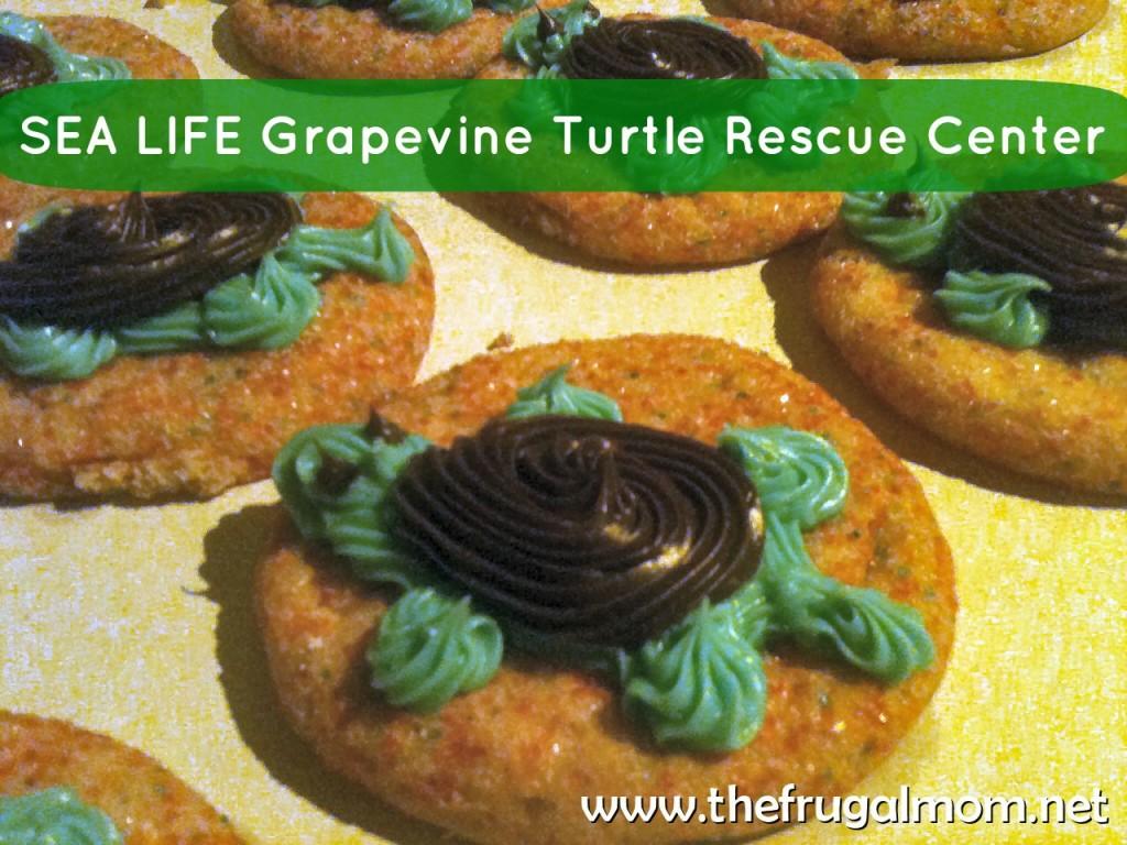 Sea Life Aquarium Grapevine