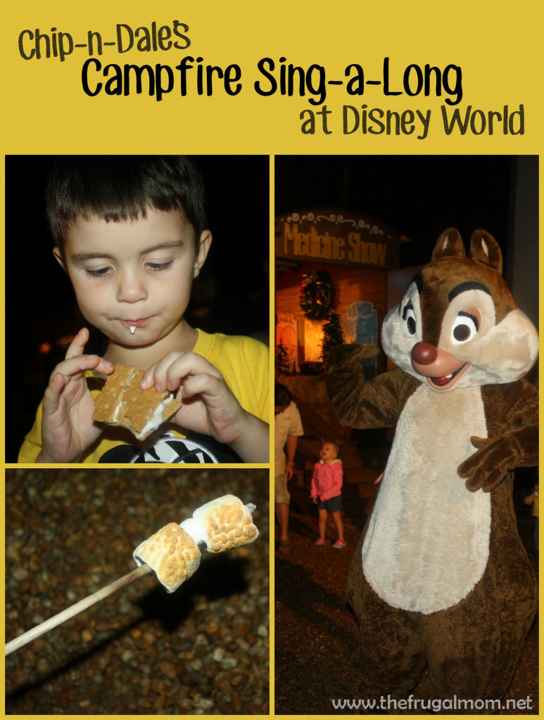 Our Unforgettable Night At Chip And Dale S Campfire Sing A