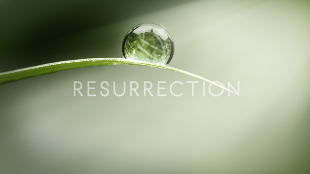 Resurrection on ABC tv