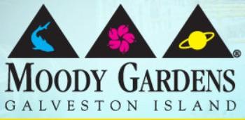 A Trip to Moody Gardens in Galveston, TX