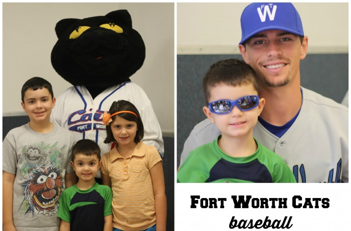 fort worth cats baseball
