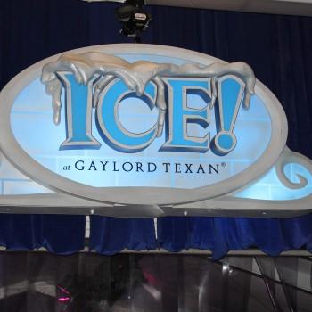 Ice Gaylord Texan
