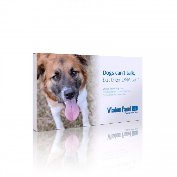 DNA for dogs