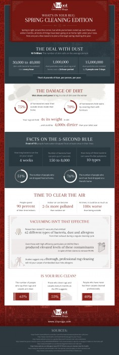 Ahdoot-Spring-Cleaning-Infographic(1)