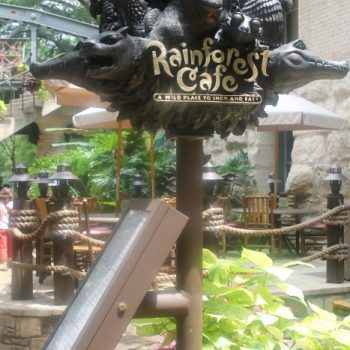 Swim Across The Yucatan At Rainforest Cafe in San Antonio