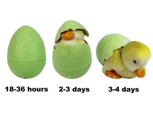 easter hatch eggs