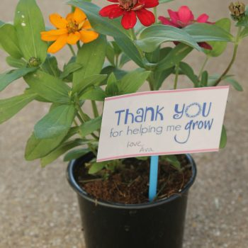 How To Make A Cute Teacher Appreciation Flower Gift