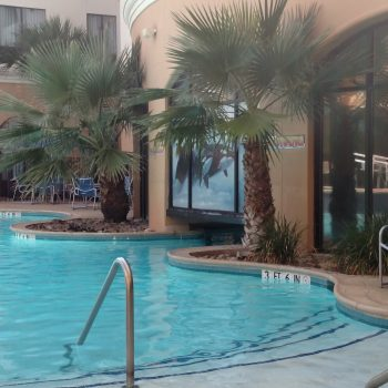 Best Hotel Near Sea World San Antonio TX: Courtyard Marriott San Antonio Sea World Westover Hills