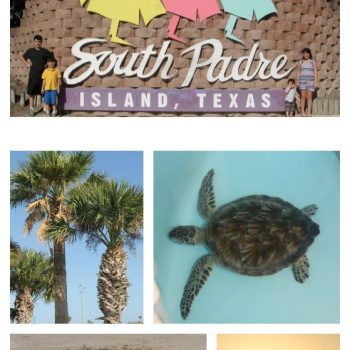 Things To Do With Children On South Padre Island