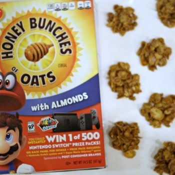 Honey Bunches of Oats Cluster Snacks