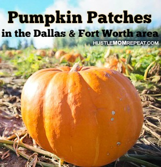 Huge List of Pumpkin Patches in DFW