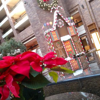 Don't Miss Christmas At The Anatole in Dallas